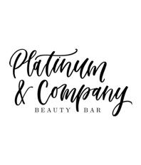 Salon Network Platinum & Company Beauty Bar