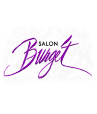 Salon Network Salon Burget